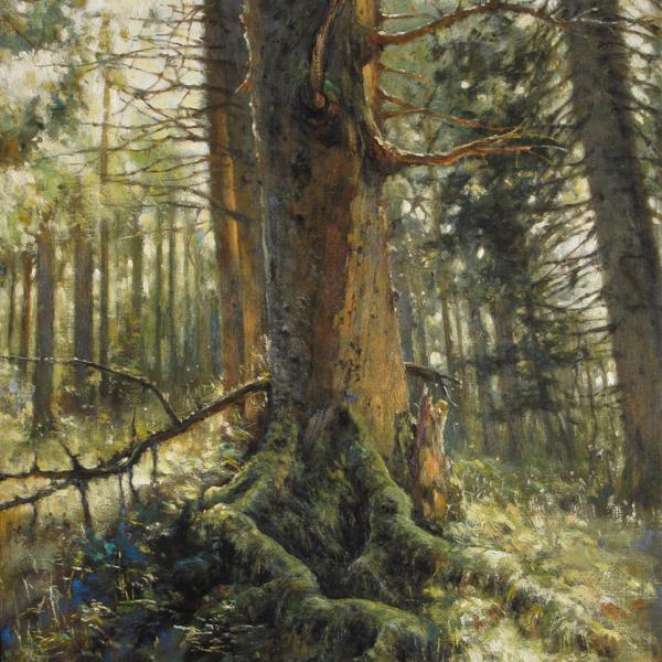 Christian Benoist - Vieux sapin vosgien - huile sur toile - 73 x 50 cm - 4500 €