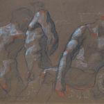 Shane Wolf - Victor fusain, sanguine, craie blanche sur papier - 32 x 40 cm - 900 €